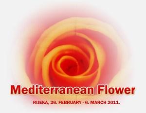 Cvijet Mediterana